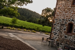 ehlersvineyard-July 13, 2015159