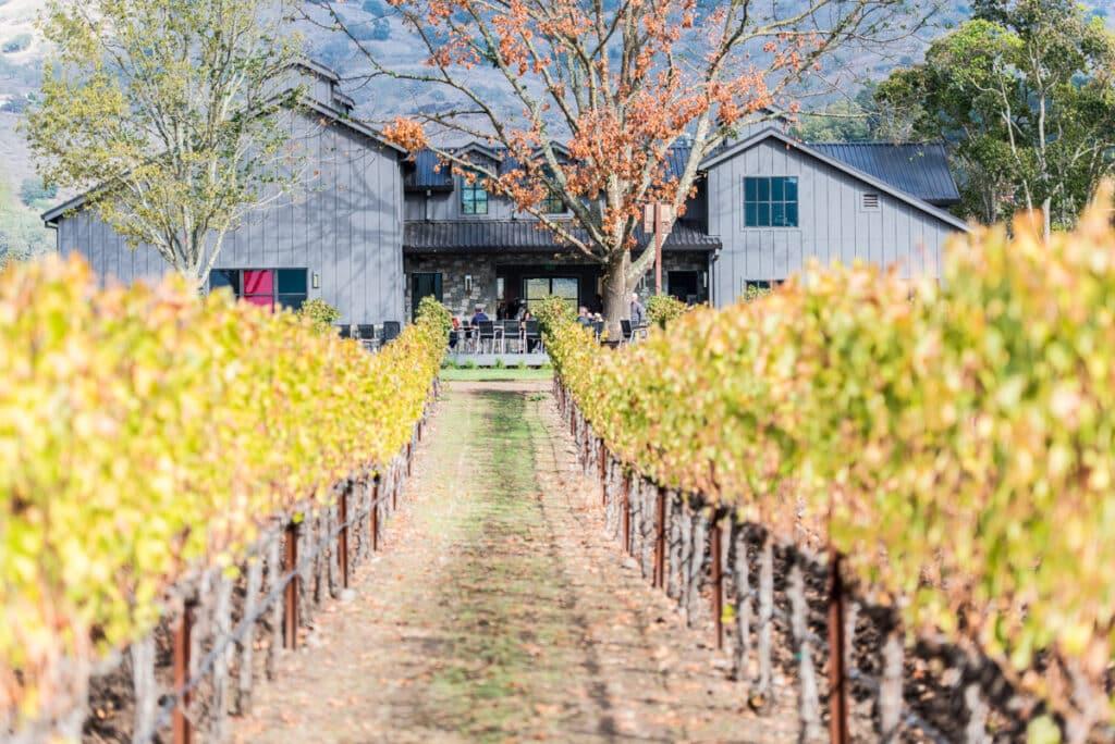 napa valley photographer, winery, vineyards